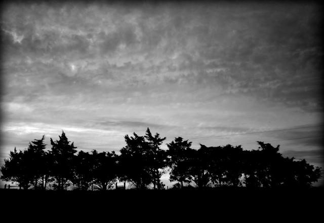 http://oz-girlspicaday.blogspot.com/2010/06/sunset-color-or-black-white.html